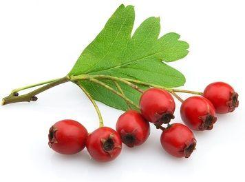 aubépine-berry